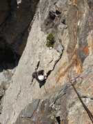 Rock Climbing Photo: 4th pitch of Cottonmouth/ Death Canyon GTNP