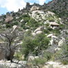 The WTF area is the group of boulders with the dead tree at the bottom right third of the pic.