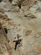 Rock Climbing Photo: shes the bosch.  wow wow wow very nice..photo by d...