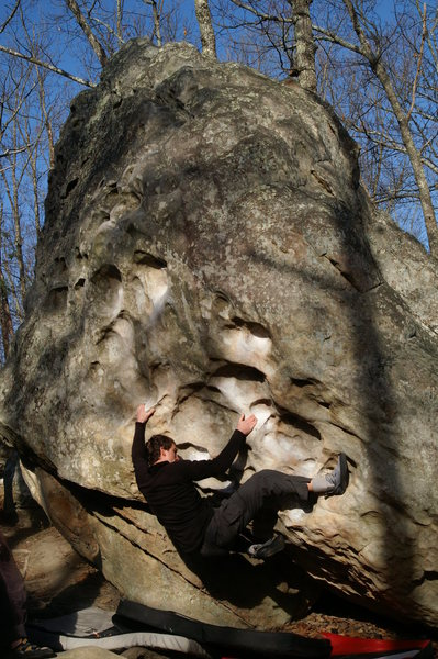 Rock Climbing Photo: Wasp