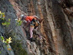 Rock Climbing Photo: Some routes have not been climbed much, so be prea...