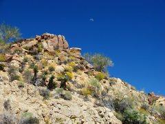 Rock Climbing Photo: Amazing beauty near Cottonwood Springs, April '08.