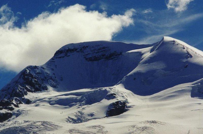 Rock Climbing Photo: Athabasca North Face