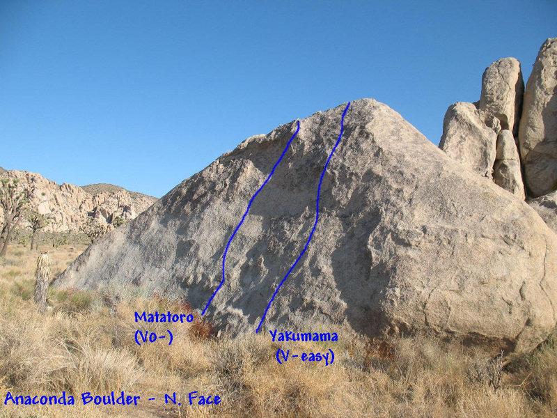 Anaconda Boulder (N. Face), JTNP.