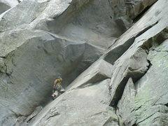 Rock Climbing Photo: The Seal, Looking Glass, NC.