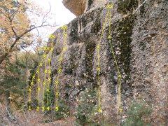 Rock Climbing Photo: Rock Island 1. World Class Tuna 5.10a 2. Tuna Dire...