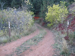Rock Climbing Photo: Single Track Trail photo after intersection road w...