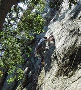 Rock Climbing Photo: leading mouse maze Photo:J Knight