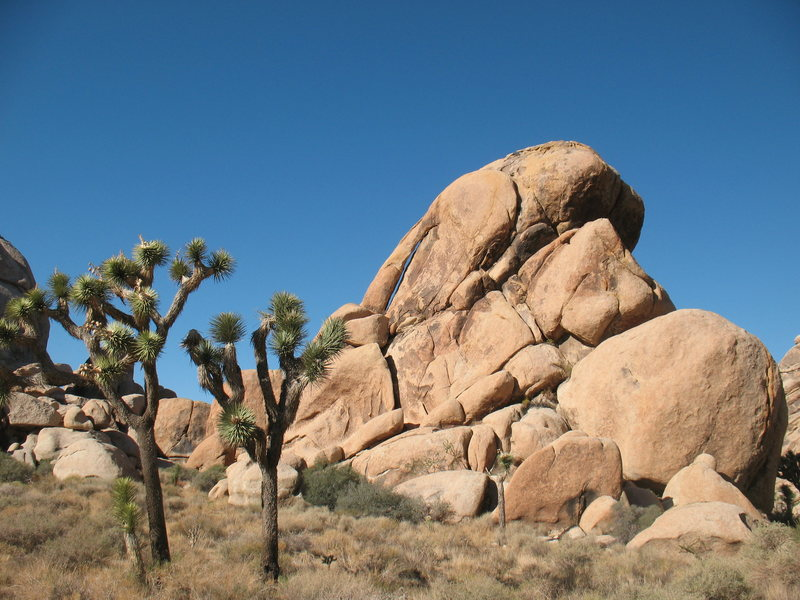 Natural arch near the Arid Piles, JTNP.