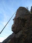 Rock Climbing Photo: Katrina TRs Apes in Estrus.