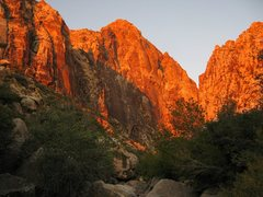 Rock Climbing Photo: Sunrise in Black Velvet Canyon.