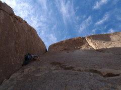 Rock Climbing Photo: Mr Nick on the prowl.