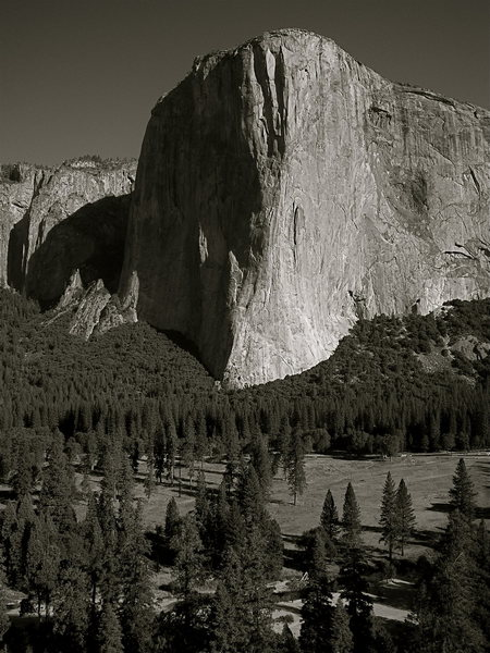Rock Climbing Photo: El Cap from Middle Cathedral