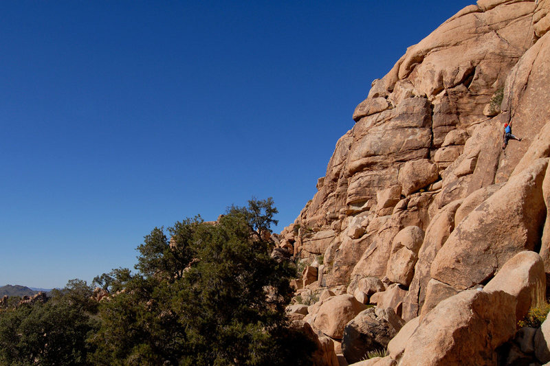 Elva Rogers climbing Watanobe Wall (5.10a) in Joshua Tree National Park.