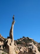 Rock Climbing Photo: Obi atop The Aguille, Joshua Tree NP