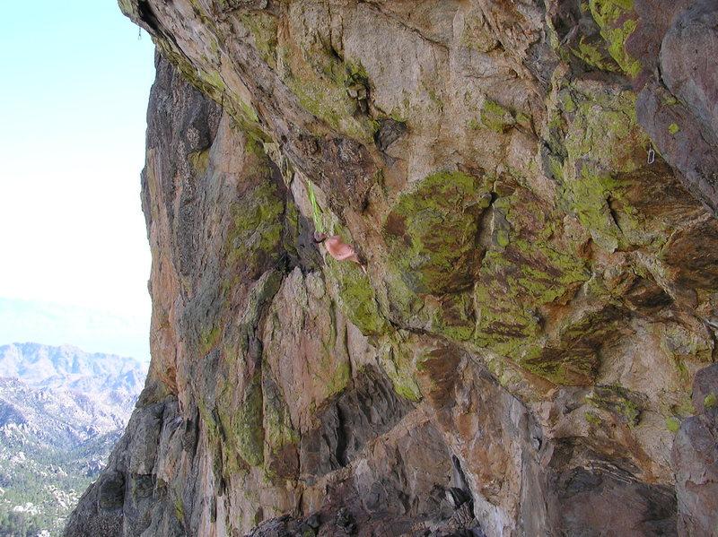 Rock Climbing Photo: Never complains, not worried about falling, not a ...