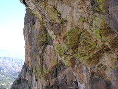 Rock Climbing Photo: Never complains, not worried about falling, not a ...
