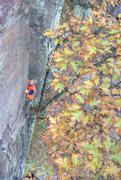 Rock Climbing Photo: Devils Lake. Perverted Inspiration. Leaves with a ...