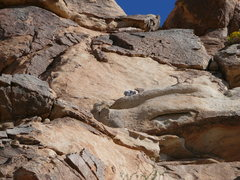 Rock Climbing Photo: Heading right to the nice belay ledge after pullin...