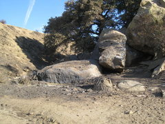 Rock Climbing Photo: After the October 2008 fire.  All the hobo habitat...