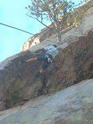 Rock Climbing Photo: Tree Roof:  Combat Rock, Big Thompson Canyon, Colo...