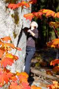 Rock Climbing Photo: U2 on a gorgeous autumn day.