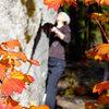 U2 on a gorgeous autumn day.