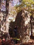 Rock Climbing Photo: Nick Rhoads on Nameless Slab.