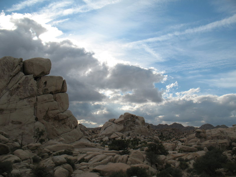 Rock Climbing Photo: Looking west from near Chimney Rock, JTNP.