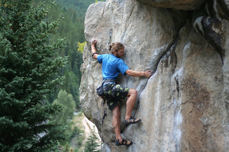 Rock Climbing Photo: Owl (B. Gibbs photo cred).