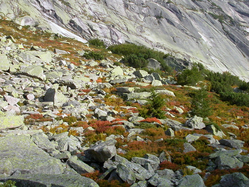 Grimsel in the autumn, with the Gelmerfluh in the background