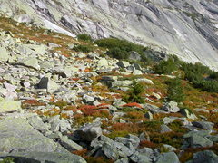 Rock Climbing Photo: Grimsel in the autumn, with the Gelmerfluh in the ...