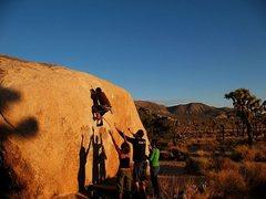 Rock Climbing Photo: Jeffy past the crux on Turnbuckle (V1), Joshua Tre...