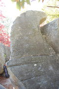 Rock Climbing Photo: This slab is Merlin for obvious reasons