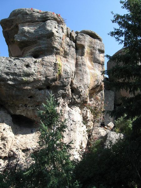 Rock Climbing Photo: The goes up to the right of the tree in the pictur...