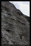 Rock Climbing Photo: Jesse Climbing Big Rock