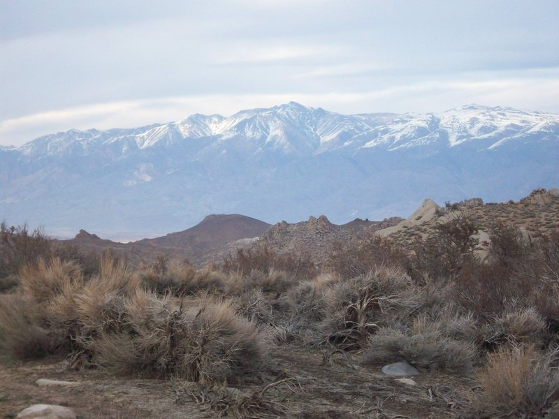 The White Mountains, from the Buttermilk camping area