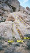 Rock Climbing Photo: Igor Price of Poodles, #1663