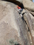 Rock Climbing Photo: Above the first bolt on the lower section of the c...