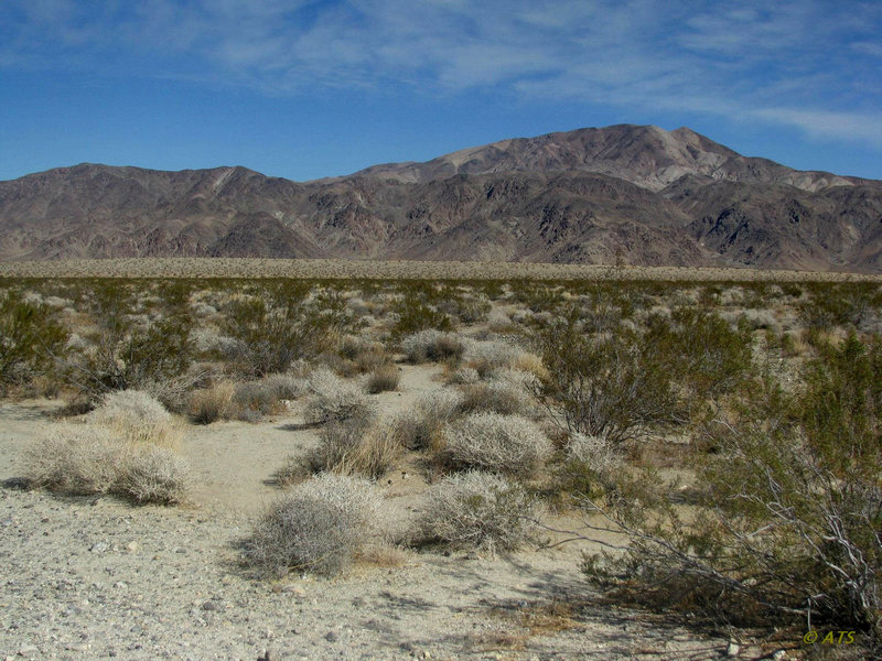 Pinto Mountain (elev. 3983) surrounded by the lowland Colorado Desert.