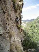 Rock Climbing Photo: Meghan, heads up Crows Nest.