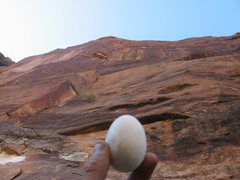 Rock Climbing Photo: The Egg.