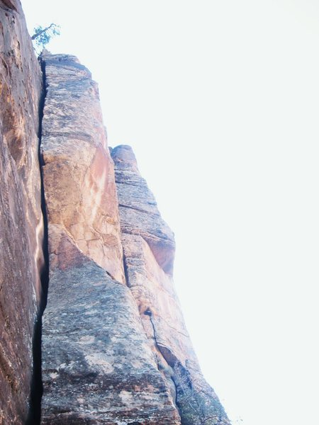 Rock Climbing Photo: P1, nice.