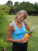 Rock Climbing Photo: growing pineapples in my spare time