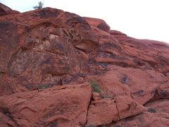 Rock Climbing Photo: The Iron Man Wall