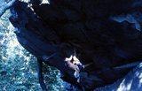 Rock Climbing Photo: Jessie Guthrie Jamming.