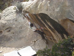 "Rock Climbing Photo: willo on ""pocket rocket"""