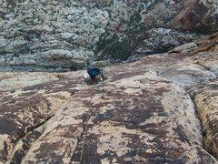 Rock Climbing Photo: Dean following pitch 10 of Dream of Wild Turkeys.