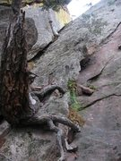 Rock Climbing Photo: Downclimb this corner from right of rappel if skip...