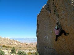 Rock Climbing Photo: The checkerboard